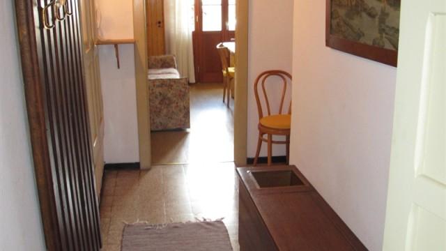 PIANTA TRILO (1)